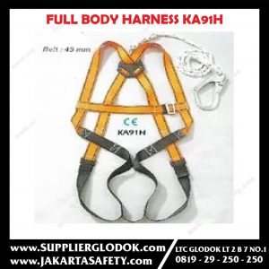 Blue Eagle KA91H Full Body Harness