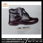 SAFETY KINGS SK – 803 X